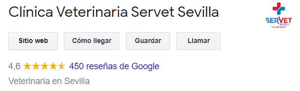 Clínica veterinaria Servet Sevilla